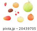 春の旬の果物  20439705