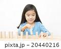 ドミノで遊ぶ女の子 積み木遊び 小学生 女の子 ドミノ 積み木 20440216