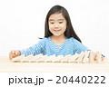 ドミノで遊ぶ女の子 積み木遊び 小学生 女の子 ドミノ 積み木 20440222