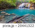 緑 水 滝の写真 20441322