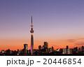 東京スカイツリー タワー 風景の写真 20446854