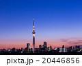 東京スカイツリー タワー 風景の写真 20446856