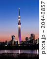 東京スカイツリー タワー 夜景の写真 20446857