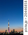 東京スカイツリー タワー 夜景の写真 20446858