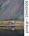 Viking village ruins in Iceland 20449306