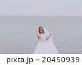 洋服 嫁 新婦の写真 20450939