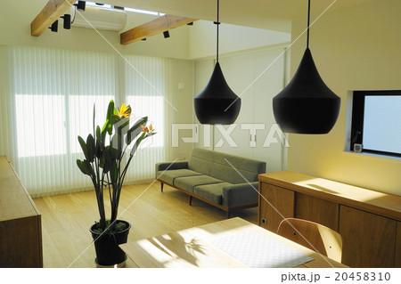 1月リビングルームと熱帯植物37ストレリッチアの写真素材 [20458310] - PIXTA