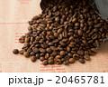 コーヒー豆  20465781