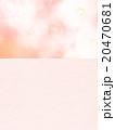 牡丹 花 背景のイラスト 20470681