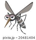 蚊のイラスト 20481404