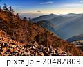 甲武信岳山頂から斜光線の富士山 20482809