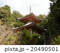 今熊野観音寺の医聖堂 20490501