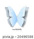 ベクター 蝶 青のイラスト 20496588