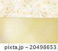 フレーム 花 薔薇のイラスト 20498653