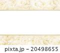 フレーム 花 薔薇のイラスト 20498655