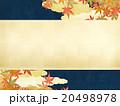 フレーム 秋 枠のイラスト 20498978