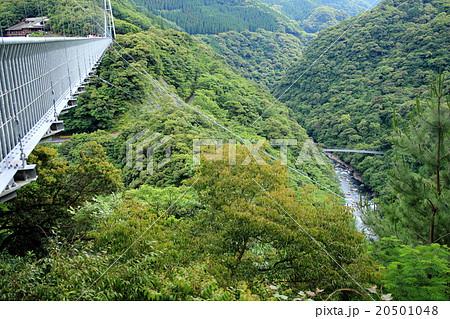 綾の吊橋 20501048