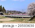 新幹線 秋田新幹線 桜の写真 20503630