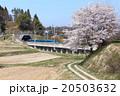 新幹線 東北新幹線 こまちの写真 20503632