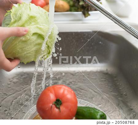 Kitchen 20508768
