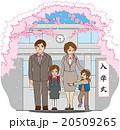 女の子 入学式 小学校のイラスト 20509265