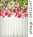 バラ お花 フラワーのイラスト 20512147