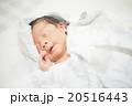 湯上りに眠る新生児 20516443