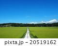 田園風景 夏景色 20519162