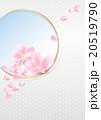 桜の花びら(和柄背景ver. / 縦) 20519790