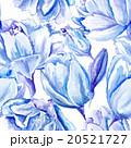 Blue Watercolor Tulip Pattern 20521727