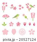 Elements of season of sakura 20527124