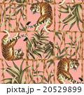 虎とジャングルのアロハ柄 20529899