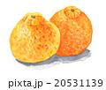 果物 柑橘類 デコポンのイラスト 20531139