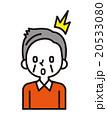 ベクター シニア 男性のイラスト 20533080