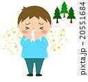 鼻をかむ 花粉症 鼻水のイラスト 20551684