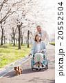 シニア夫婦 介護イメージ 20552504