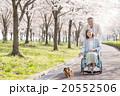 シニア夫婦 介護イメージ 20552506