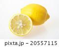 国産レモン(瀬戸内レモン)-広島県尾道市瀬戸田 20557115