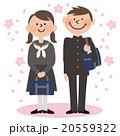 男女学生_セーラー服と学ラン,桜背景 20559322