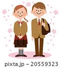 男女学生_茶ブレザー,桜背景 20559323