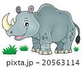 サイ さい 犀のイラスト 20563114