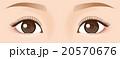 目元アップ まつげ 美容 20570676