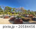 庭園 20584456