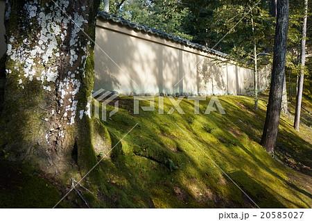 京都「金閣寺」(鹿苑寺)境内の苔に覆われた土塀 20585027