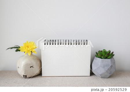 Notepad and plants pots, room interior mockupの写真素材 [20592529] - PIXTA