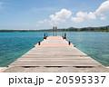 クト湾の桟橋 (ニュー・カレドニア、イル・デ・パン) 20595337