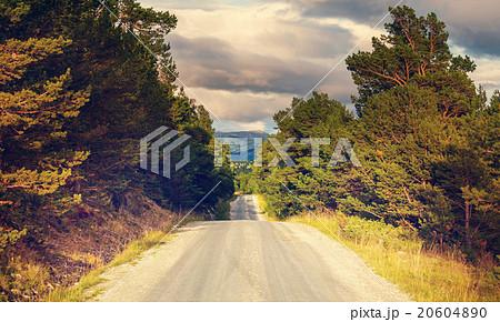 Road in Norway 20604890