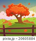 ベクトル 自然 樹木のイラスト 20605884