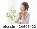 ポートレート スマホで通話するシニア女性 20608422
