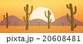 ベクトル 砂漠 サボテンのイラスト 20608481